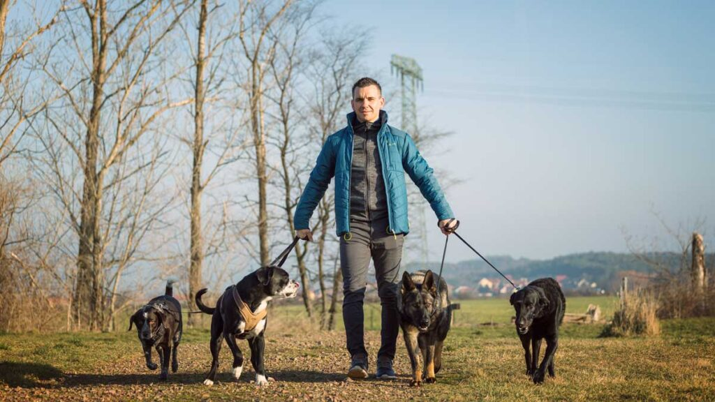Steve Kaye von Personal Hundecoaching